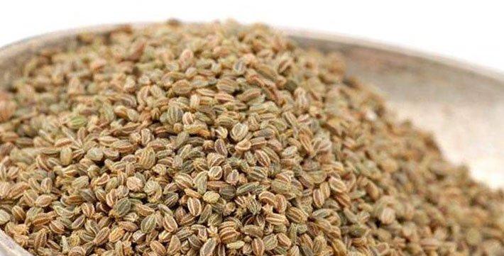 семена сельдерея для почек