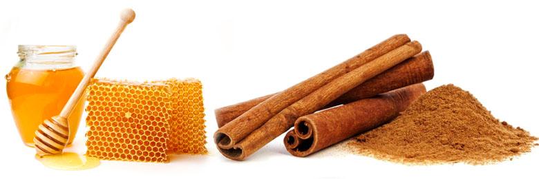 Корица и мед для лечения печени